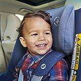 Maxi-Cosi Pearl Smart Kindersitz - 7